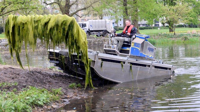 mit einem amphibienfahrzeug gegen algen im stadtgarten teich nachrichten aus essen der stadt. Black Bedroom Furniture Sets. Home Design Ideas