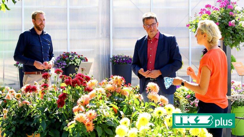 Rheinberg: Ein Hauch von Advent im Hochsommer